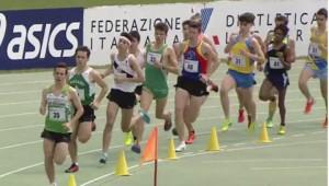 Luca Malpighi nei 1500